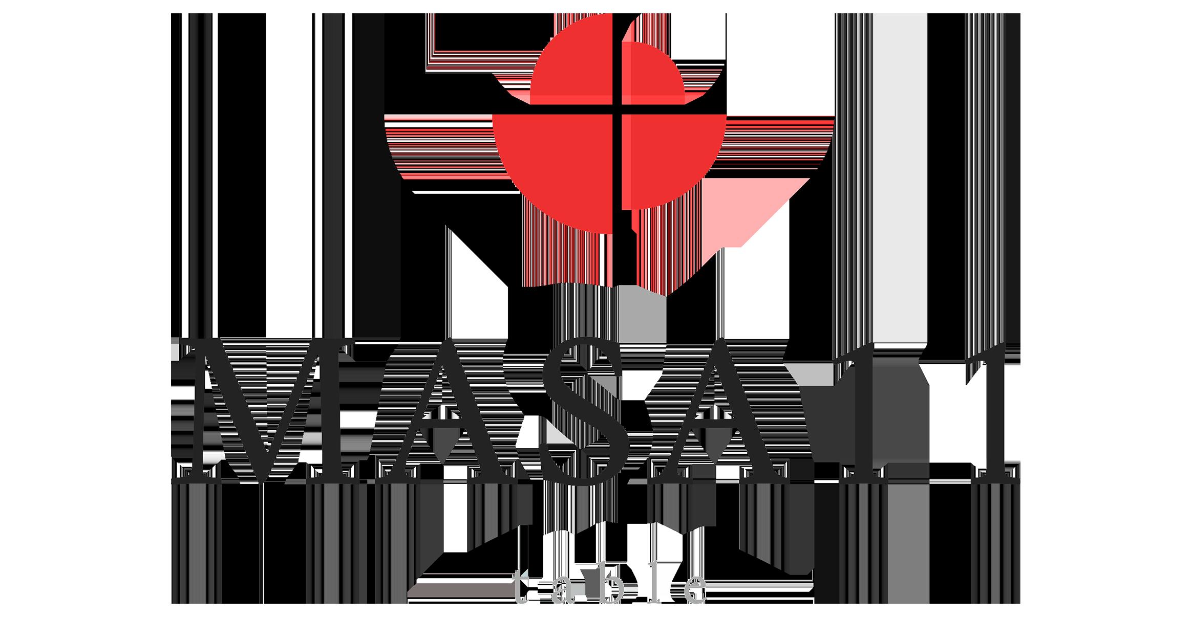 Masa11